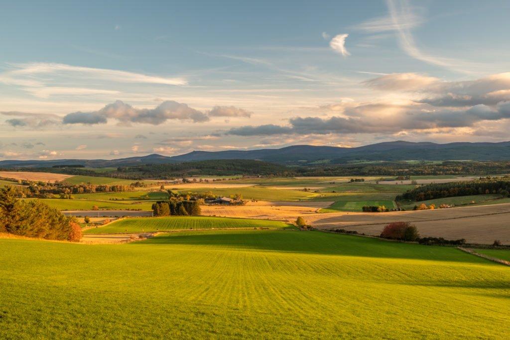 Aberdeenshire countryside. farmland